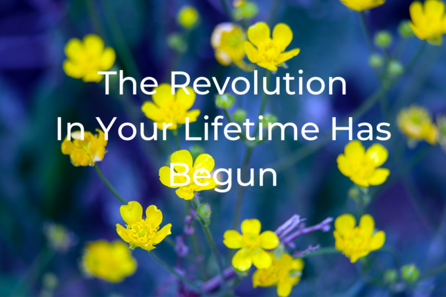 Revolution In Your Lifetime